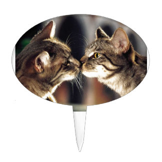 Tabby Cat Reflections Cake Topper
