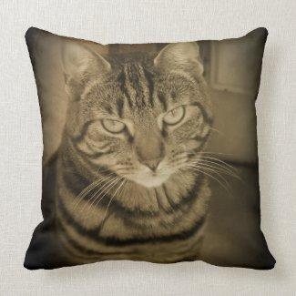 Tabby Cat Sepia Throw Pillow