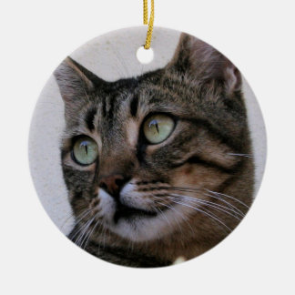 Tabby Cat Sitting In The Shade Behind Passiflora V Double-Sided Ceramic Round Christmas Ornament
