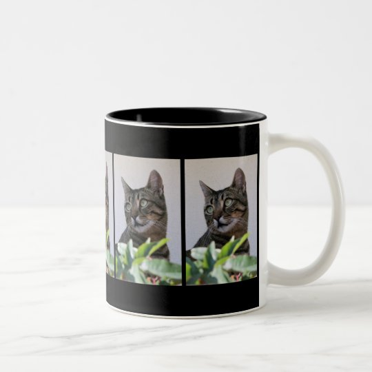 Tabby Cat Sitting In The Shade Behind Passiflora V Two-Tone Coffee Mug
