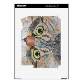 Tabby Cat Skin For iPad 2