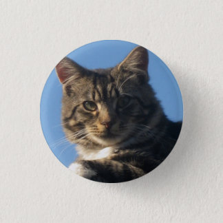 Tabby Cat - Small Round Badge Pinback Button