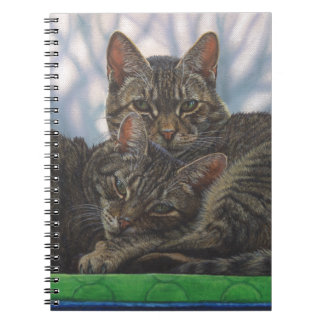 tabby cat soulmates notebook