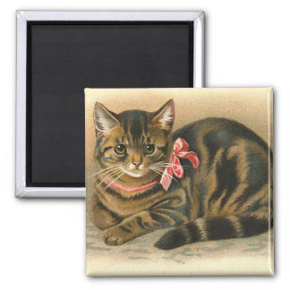 """Tabby Cat"" Square Magnet"