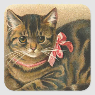 """Tabby Cat"" Square Sticker"