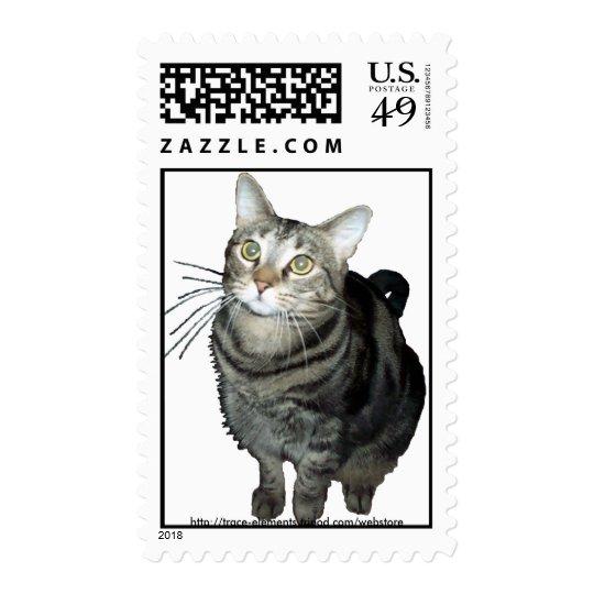 Tabby cat stamp