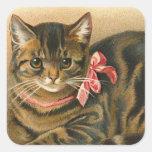 """Tabby Cat"" Sticker"