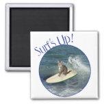 Tabby Cat Surf's Up! Fridge Magnet