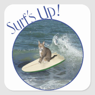 Tabby Cat Surf's Up! Square Stickers