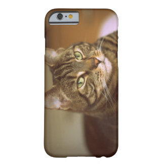 Tabby Cat Vintage 1960s Barely There iPhone 6 Case