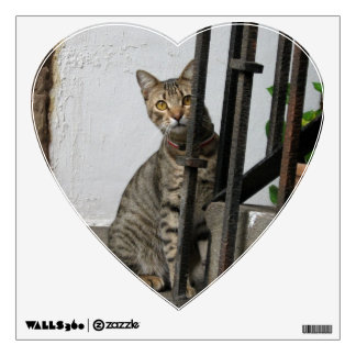 Tabby Cat Wall Decal