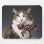 Tabby cat wearing plaid bow mouse pad