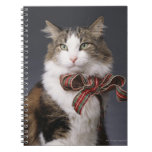 Tabby cat wearing plaid bow spiral note books