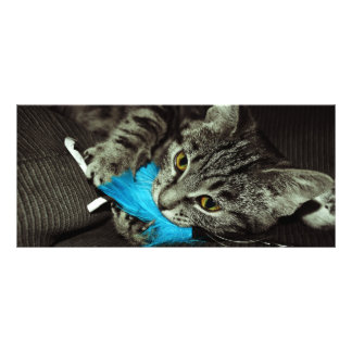 Tabby Cat with Feather by Shirley Taylor Rack Card