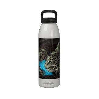 Tabby Cat with Feather Water Bottles