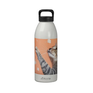 Tabby cat with paw cathching butterflies drinking bottles