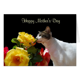 Tabby Cat with Roses Mother's Day Greeting Card