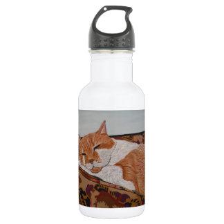 Tabby Catnap 18oz Water Bottle