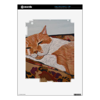 Tabby Catnap Decal For The iPad 2