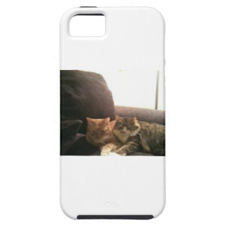 Tabby Cats iPhone 5 Cases