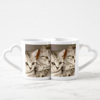Tabby Cats Coffee Mug Set