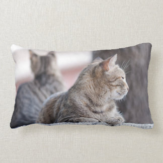 Tabby cats in repose lumbar pillow