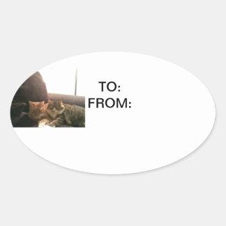 Tabby Cats Oval Sticker