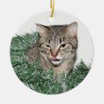 Tabby Christmas Christmas Tree Ornaments