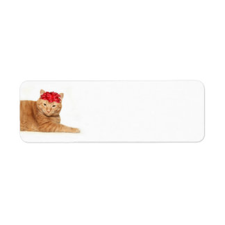 Tabby Christmas Label