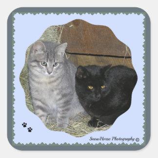 Tabby & Cuddles Square Sticker