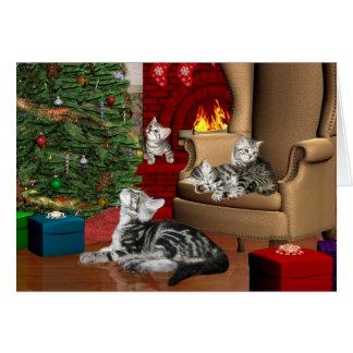 Tabby family Christmas Greeting Card