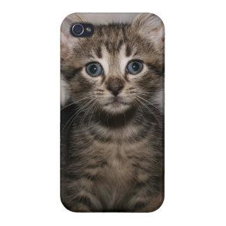 Tabby iphone case