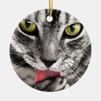 Tabby Katz Ceramic Ornament