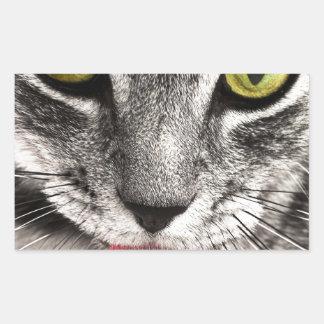 Tabby Katz Rectangular Sticker