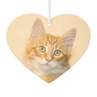 Tabby kitten air freshener