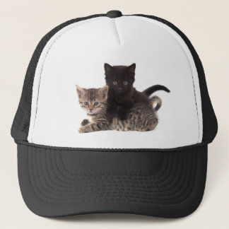 tabby kitten black kitten trucker hat