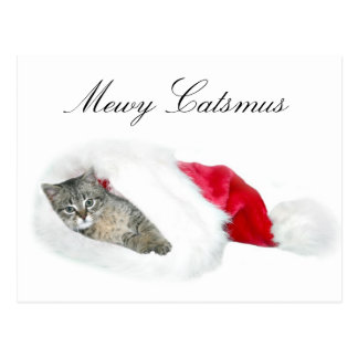 Tabby kitten Christmas Postcard