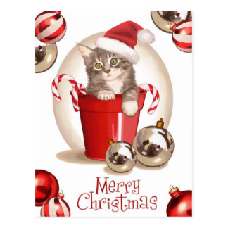 Tabby Kitten Christmas Postcard