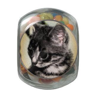 Tabby Kitten Glass Jar