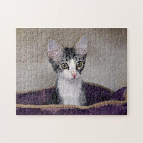 Tabby Kitten in a Purple Bed Jigsaw Puzzle