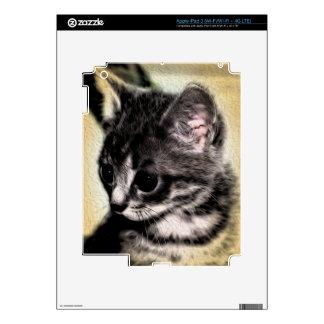 Tabby Kitten iPad 3 Decals