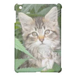 Tabby Kitten iPad case