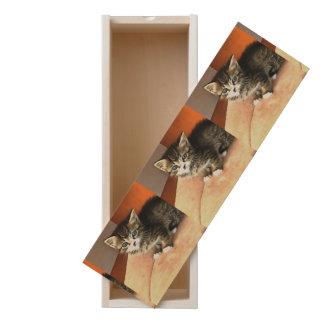 Tabby Kitten Named Miss Pip Squeak Wooden Keepsake Box