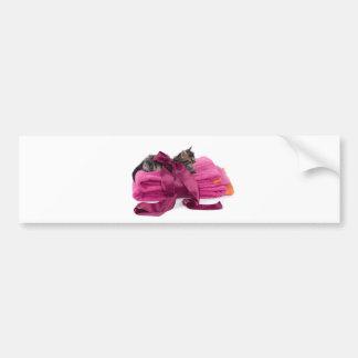 Tabby Kitten one pink towels Car Bumper Sticker