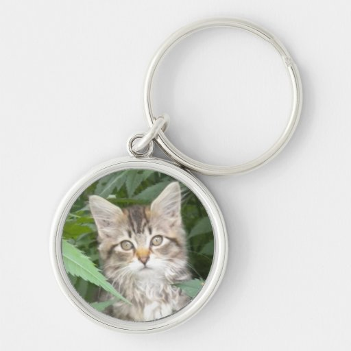 Tabby Kitten Silver-Colored Round Keychain