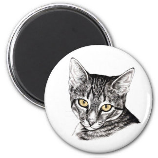 Tabby Kitten Sketch Refrigerator Magnets