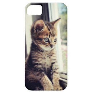Tabby Kitten Watching Out Window iPhone SE/5/5s Case