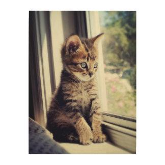 Tabby Kitten Watching Out Window Wood Wall Art
