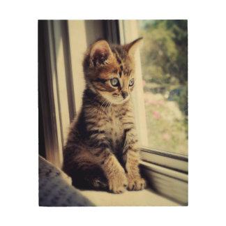 Tabby Kitten Watching Out Window Wood Wall Decor