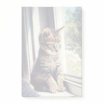 Tabby Kitten Watching Post-it Notes